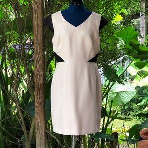 Antonio Melani   Color Block A Line Dress